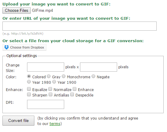 Animated GIF Conversion