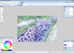 Best free Image Editing Programs | Online file conversion blog