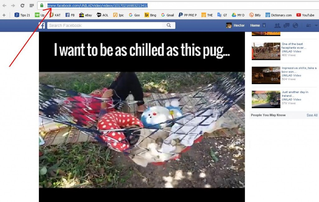 How to Save a Video From Facebook Easily - Picture 1