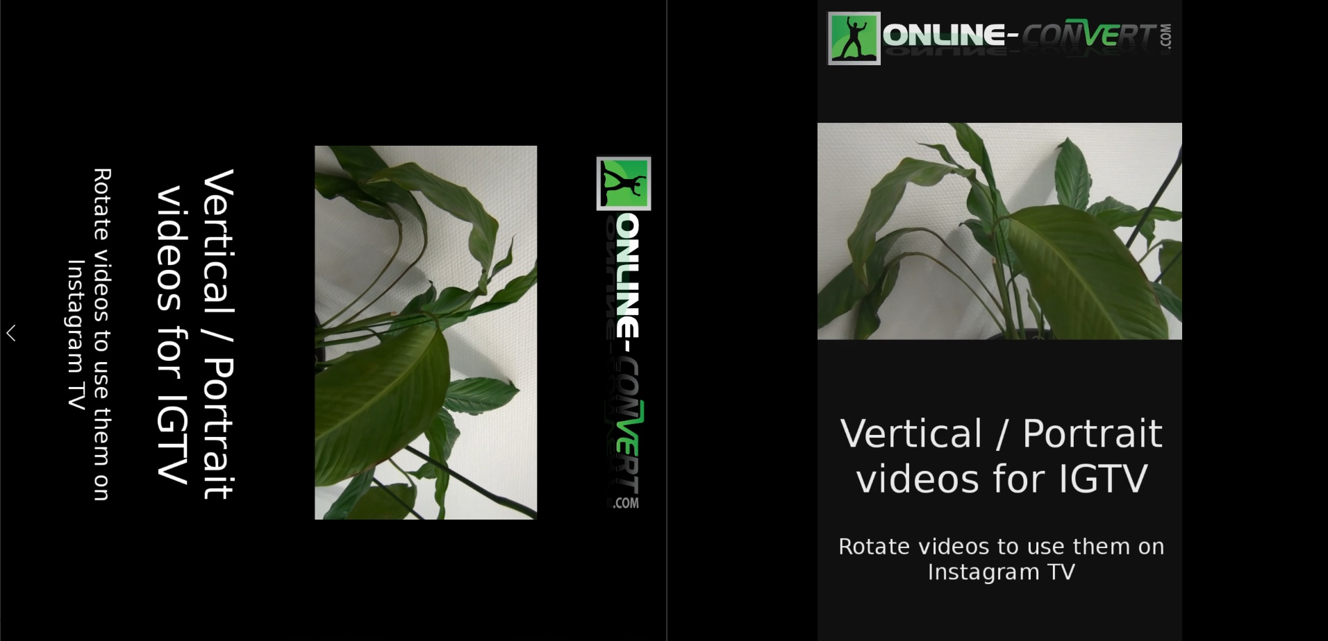 How to rotate videos for igtv tutorial online file conversion blog below we opened both videos in two different media players on the left you can see the edited video on the right you see the video after rotation ccuart Images